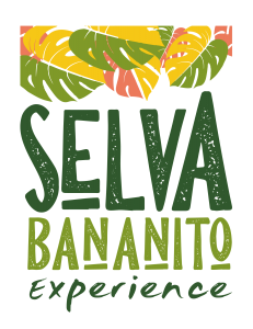 Logo Final_Mesa de trabajo 1